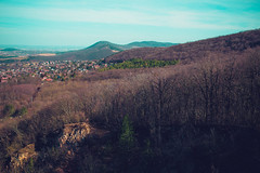 KRIS8121 (Chris.Heart) Tags: erdő buda budapest túra természet forest nature hiking