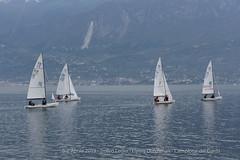 Trofeo Birra Leder - 6 e 7 aprile 2019 (Classe Italiana Flying Dutchman) Tags: flying dutchman fd sailing regatta