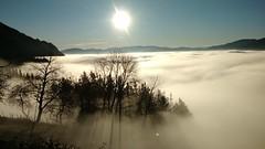 BAJO LA NIEBLA (eitb.eus) Tags: eitbcom 40672 g1 tiemponaturaleza tiempon2018 invierno gipuzkoa azkoitia patxisánchez