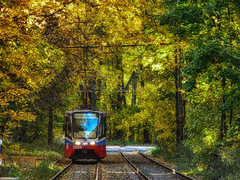 Moscow tram (janepesle) Tags: moscow russia tram transport travel forest city cityscape nature autumn fall foliage road light москва измайлово трамвай