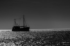 An der Nordsee/ At the North Sea (LENS.ART Photographie) Tags: monochrom bw sw schiff gegenlicht sea nordsee northsea norddeutschland ocean black nikon d7200 fischkutter water reflections frontlight ship boat sky