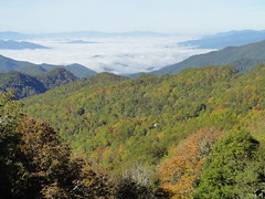 DSC07616 (TerrMys) Tags: northcarolina nc southern appalachians fall autumn october