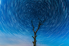 Star trials above Lincolnshire (Andy barclay) Tags: star stars sky trails galaxy milkyway milky way long exposure stacked photostack lincolnshire louth skyscape wide sigma nikon d7100 1020mm night cold winter