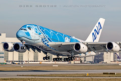 ANA_A380_JA381A_20190225_XFW-3 (Dirk Grothe | Aviation Photography) Tags: ana a380 ja381a xfw turtle honu all nippon airways