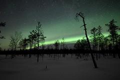 Fires at the mire (JFofonoff) Tags: auroraborealis revontulet winter night natureinfocusgroup
