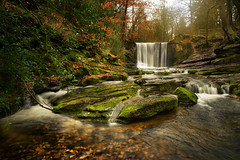 In no-man's land (PentlandPirate of the North) Tags: nantmill offasdyke brexit story europeanunion irishbackstop devachester coracle britanniasuperior clywedogancientwoodland mercia earlymiddleages westernromanempire projectfear waterfall northwales