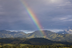 Arcoiris (José M. Arboleda) Tags: arcoiris atardecer nube montaña árbol palmera cielo bosque popayán colombia canon eos 5d markiv ef24105mmf4lisusm josémarboledac