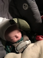 "Luc Asleep in His Car Seat • <a style=""font-size:0.8em;"" href=""http://www.flickr.com/photos/109120354@N07/32567735758/"" target=""_blank"">View on Flickr</a>"