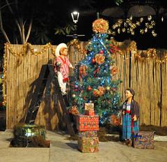 Christmas Tree Oaxaca Mexico (Ilhuicamina) Tags: arbolnavideno christmastree mexico oaxaca zocalo displays holidays