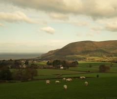 Doverhay View, Exmoor (EmPhoto.) Tags: doverhay exmoor uk autumn landscapepassion emmiejgee sonya7r sonyzeiss2470mm valeofporlock