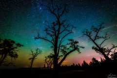 Starry Aurora Sky (owenweberlive) Tags: michigan sunrise sunset landscape water lake dune sand sky grass summer fall autumn spring pure national park river stargazing stars starry milky way aurora borealis northern lights silhouette shadow tree trees