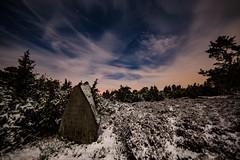 Mondnacht in der Eifel (clemensgilles) Tags: winter trees beautiful nightphoto nachtfotografie moonlight moonglow deutschland eifel germany