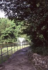 Belfountain Conservation Area Path in the Shade (Bill Smith1) Tags: belfountainconservationarea bellieveinfilm billsmithsphotography caledon2008 heyfsc nikkors50f14lens nikkormatftn velvia100