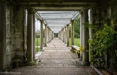 Garden Columns (KRHphotos) Tags: hdr architecture abandoned virginia columns swannanoapalace