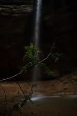 Hocking Hills-26 (saylorty) Tags: hockinghills hocking hills state park columbus ohio logan ash cave ashcave cedarfalls cedar falls waterfall hiking nature beautiful