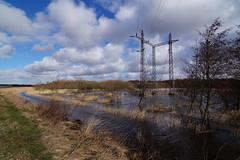 Water everywhere (Steenjep) Tags: landskab landscape field mark himmel sky regn rain vand water flooded oversvømmet cloud herning jylland jutland danmark denmark