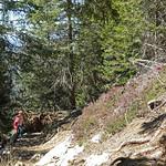 2019-03-29 03-31 Südtirol-Trentino 045 Caldonazzo-Lochere, Pizzo di Levico thumbnail