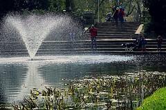 Let's take a photo... #2019#groningen#visitgroningen#instameetgroningen#fotosipkes#citylife#cityphotography#city#pics#letstakeapicture#fountain#water#photographers#walk#wanderer#wanderlust#see#enjoy#beauty#world#discover#explore#nature#streetstyle#urban#l (agnes.postma.hoogeveen) Tags: fountain wanderlust loveit beauty city fotosipkes enjoy letstakeapicture photographers see groningen world wanderer cityphotography instameetgroningen pics discover explore nature streetstyle water lifestyle 2019 urban citylife visitgroningen walk