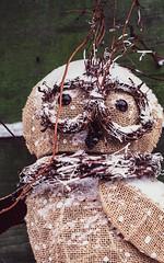 analog owl (Alvin Sangma Photography) Tags: analog film nikon nikonfe nikkor50mm18 fujifilm filmscan negativescan