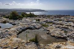 Rock Pool # 1 - Coastline arround Mellieha #1 (Daveoffshore) Tags: malta mellieha coast coastline water scenic sky sea geology limestone rock landscape pool