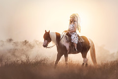 _SSS6292 (Bugphai ;-)) Tags: horse woman riding silhouette horseback sunset equestrian women animal girl western sun beautiful sky sunrise rider nature female summer ride medieval field background outdoors horizon horses cowgirl beauty young person black lifestyle landscape orange outdoor love life training romantic equine mare beach people princess sunlight color dress back light happy