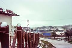 Snowballs (hiphopmilk) Tags: copyright©jaredyehwooehmoehfilms konica offroad 現場監督 zoom 35mm 135film film analog analogue jaredyeh hiphopmilk kodak travel china sichuan aba hongyuan qiongxi qiongxizhen tibetan longrang snow snowball path street lane alley village fence