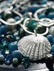 Silver seashell (tanith.watkins) Tags: seashell jewellery silver macromondays