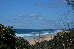 Point Arkwright [looking south] (Dreaming of the Sea) Tags: bluesky sunshinecoast tamronsp2470mmf28divcusd nikond7200 clouds trees sky sand sea surf water waves pacificocean pandanuspalm saturdaylandscape 2018