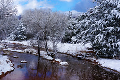 Here's to hope (Francoise100) Tags: christmasday wasser ruisseau stream boyntoncanyon hiver winter sedona az arizona schnee snow neige creek trees water riverbank