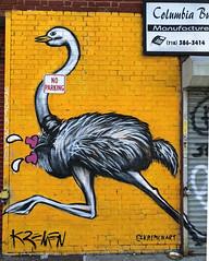 Ostrich by Kremen (wiredforlego) Tags: graffiti mural streetart urbanart aerosolart publicart williamsburg brooklyn newyork nyc ny kremen
