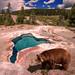 Bear Springs