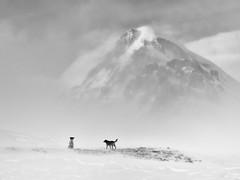 Mkinvartsveri (Kazbek, 5047m) (S_Peter) Tags: mkinvartsveri kazbek kazbegi georgia sakartvelo kaukasus ski touring skitour dogs fuji xt1 voigtländer voigtlaender voigtlander vm heliar f35 50mm