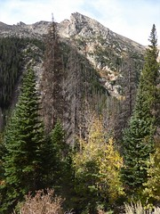 Colorado, Rocky Mountain National Park, Trail Ridge Road, Landscape (Mary Warren 12.4+ Million Views) Tags: colorado rockymountainnationalpark trailridgeroad mountains nature flora trees pinetrees landscape