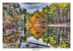 Pond Light (Pearce Levrais Photography) Tags: water lake pond reflection log cloud hdr canon explore nh newhampshire autumn autumnal foilage fall rock plant grass