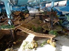 rhenen_2_055 (OurTravelPics.com) Tags: rhenen the giant panda wu wen her residence pandasia ouwehands dierenpark zoo