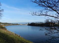 River Dee, Aberdeen, Jan 2019 (allanmaciver) Tags: river dee aberdeen north east coast scotland blue water curve walk esplande trees shaow banks allanamciver