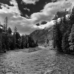 Upstream the Stehekin River with Views to Trees and Mountains (Black & White, North Cascades National Park Service Complex) thumbnail