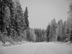 Forest high way  #Finland #nature #forest #trees #road #wild #environment #lines #winter #snow #cold #white #blackandwhite #bnw #bnwphotography #bnw_captures #bnwmood #monochrome #bnw_greatshots #bnw_planet #bnwlife #olympus #travel (Zilvinas Degutis) Tags: forest nature olympus winter cold bnw trees bnwlife environment bnwplanet white blackandwhite road bnwmood snow bnwgreatshots finland monochrome bnwphotography bnwcaptures lines travel wild