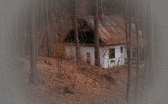Regards from my holiday ... (Julie Greg .. Holiday 13/12 - 31/12 2018) Tags: nature home wood trees canon czech leafs colours texture