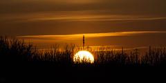 Sunset / @ 300 mm / 2019-03-21 (astrofreak81) Tags: explore clouds shadow schatten sunset sun wolken sonnenuntergang sonne sky himmel heaven light dawn orangesky orange dresden 20190321 astrofreak81 sylviomüller sylvio müller