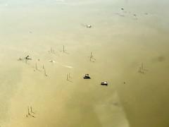 Rod pump wells on platforms in Houston Ship Channel, TX (- Adam Reeder -) Tags: bird boat y2019 m02 d24 lat300 lon950 baytown harris texas united states photo jpg apple iphone x rod pump wells platforms houston ship channel tx