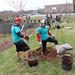 Newell_Elem_Tree_Planting_2019  (83)
