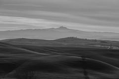 Val D'orcia (Tuscany) (Mr.Ceks) Tags: toscana tuscany italy valdorcia pienza montepulciano natura outside landscape sky siena blackwhite bn photo