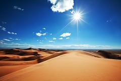 240_F_36524479_2sm0kwZQmkjINssAEgrX4FKrNL1nov8g (lhoussain) Tags: camel another life sunrise sunset calm relax berber women
