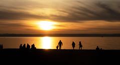 Seattle - Golden Gardens (andrewstevenson) Tags: seattle america usa sunset sun silhouette landscape reflection nature sea pacific north west northwest beach evening dusk