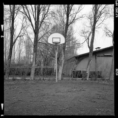 Fejø (tiltdesign2016) Tags: fejø fejo dänemark denmark ilfordhp5400asa 400800 analogphotography bw mittelformat yashicamat124g ilfordilfosol319 basketball