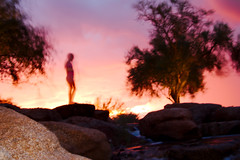 Zorn Returns at Sunset (Ed Cheremet) Tags: alien arizona desertargonaughtgmailcom edcheremet goodyear phoenix zornreturns abstract blue blur color ghost httpedcheremetartistwebsitescom humanoid pink rocks shadow silhouette strangephoto sunset surreal tree water