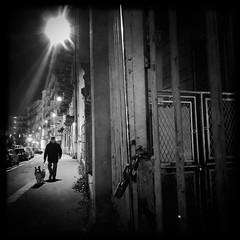 Walking the human (_cristinarossi) Tags: street streetlights streetphotography nightphotography gate door night torino walking dog