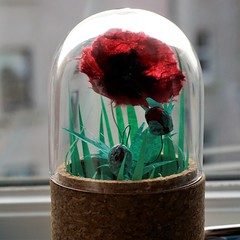 IBuenz_PaperPoppyCommission2 (Isabell Buenz) Tags: booksculpture paperart papersculpture bookart bookpages exhibition commission scotland edinburgh isabellbuenz buenz recycled closeup nature flowers paperflowers origami thread stitching solublefabric ibuenz papercutting