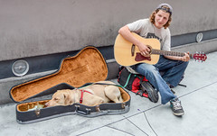 Las Vegas 2014 (TDog54Photography / TCS Photography) Tags: las vegas west coast nevada mojave desert pacific time zone travel mountains man dog strip playing strings sidewalk guitar shoes sleeping
